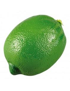 Imitación de lima para fruterías y la decoración de escaparates de tiendas o comercios