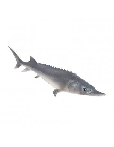 Imitación de esturión pez para pescaderías y la decoración de escaparates de tiendas o comercios