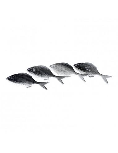 Imitación de sardinas para pescaderías y la decoración de escaparates de tiendas o comercios