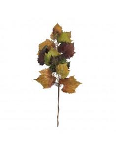 Rama de hojas de vid para la decoración de la vendimia en licorerías catas bodegas de vino
