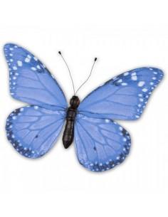 Mariposa azul 80x60cm