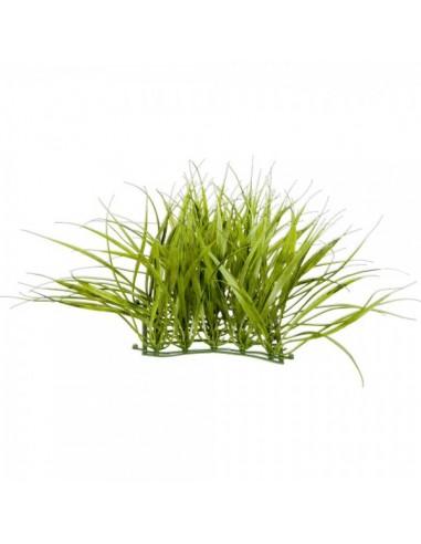 Panel de hierba tallo largo para escaparates de primavera en tiendas y centros comerciales