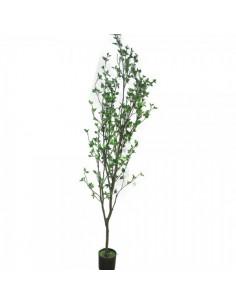 Árbol belladonna para escaparates de primavera en tiendas y centros comerciales