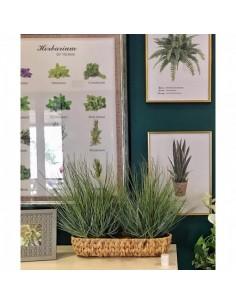 Arbusto de hierba cúpula para la decorar en primavera centros comerciales y escaparates