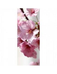 Banner-poster flores rosa para escaparates de primavera en tiendas y centros comerciales