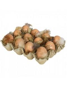 Docena de huevos en caja de cartón para la decoración de escaparates en verano con imitación alimentos
