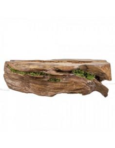 Articulo decorativo de madera con musgo para escaparates en verano de tiendas o comercios