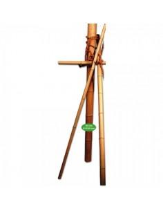 Palo de bambú para escaparates en verano de tiendas o comercios