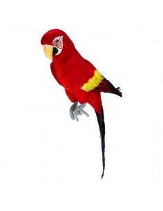 Loro tropical sentado para la decorar espacios y escaparates de verano con mamíferos y aves