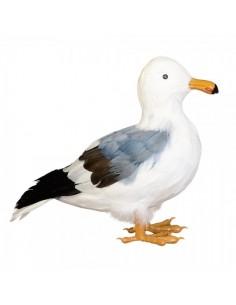 Gaviota de pie para la decorar espacios y escaparates de verano con mamíferos y aves