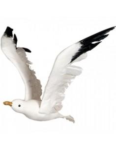 Gaviota volando para la decorar espacios y escaparates de verano con mamíferos y aves