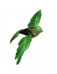Pájaro petirrojo o robín volando para la decorar espacios y escaparates de verano con mamíferos y aves