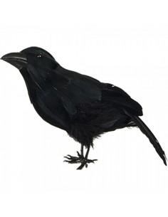 Pájaro cuervo de pie para la decorar espacios y escaparates de verano con mamíferos y aves