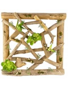 Marco de madera con musgo y hojas para escaparates en verano de tiendas o comercios
