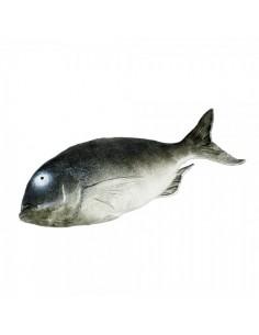 Imitación perca pescado para pescaderías y la decoración de escaparates de tiendas o comercios