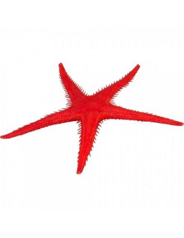 Imitación estrella de mar para pescaderías y la decoración de escaparates de tiendas o comercios