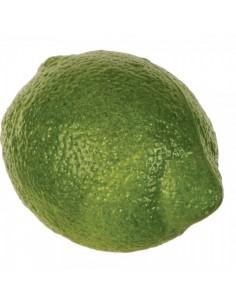 Imitación lima verde natural para fruterías y la decoración de escaparates de tiendas o comercios