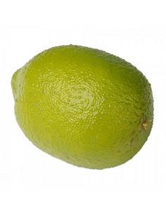 Imitación limón verde cítrico para fruterías y la decoración de escaparates de tiendas o comercios